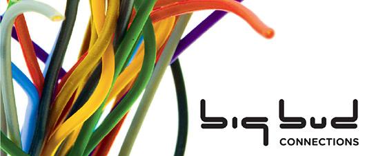 Big Bud - Connections LP